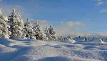 Winter Unit and Activities for Homeschool Preschool
