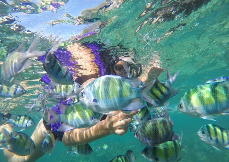 Thailand - Phi Phi Islands www.discoveringyourhappy.com