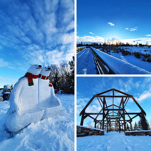 Various winter photos near Telford Lake, Leduc, AB