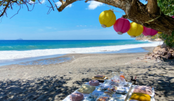 Discover beach picnic