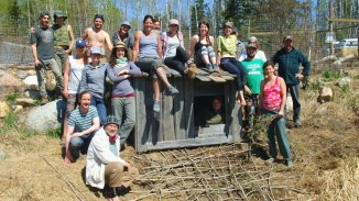 Ness Creek Permaculture Forest Garden