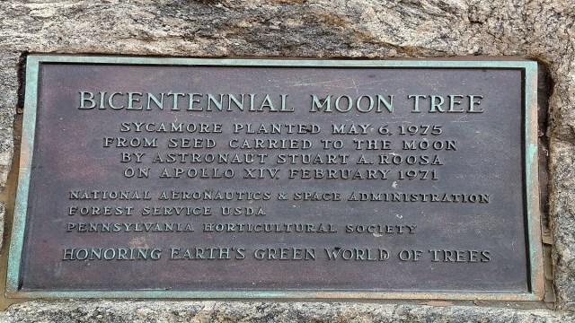 Apollo 14 Moon Trees
