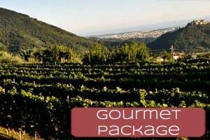 Gourmet vacation in Liguria Cinque Terre