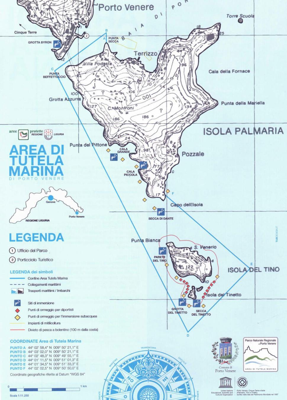 palmaria island diving portovenere