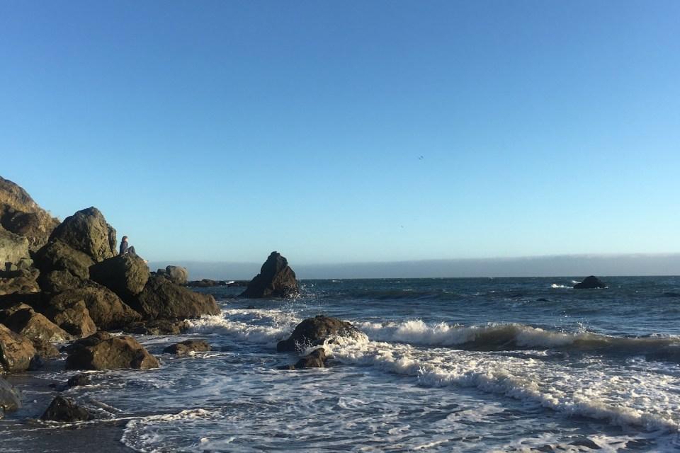 Sausalito Beaches - Muir Beach