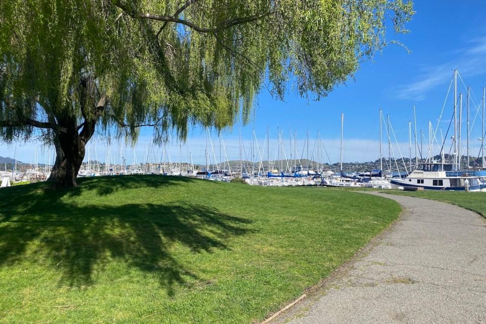 Sausalito Waterfront Parks - Marina Plaza