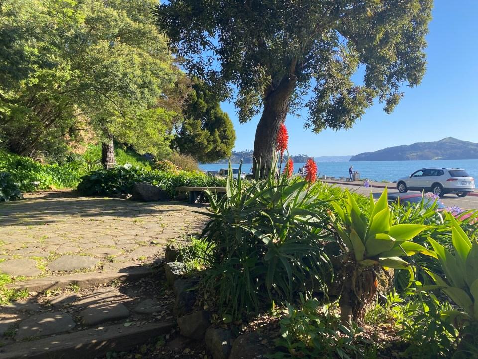 Sausalito Parks - Tiffany Park