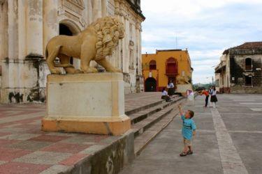 Look mom! A lion (león)
