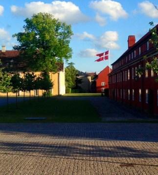 jackie-gaffney-danish-flag