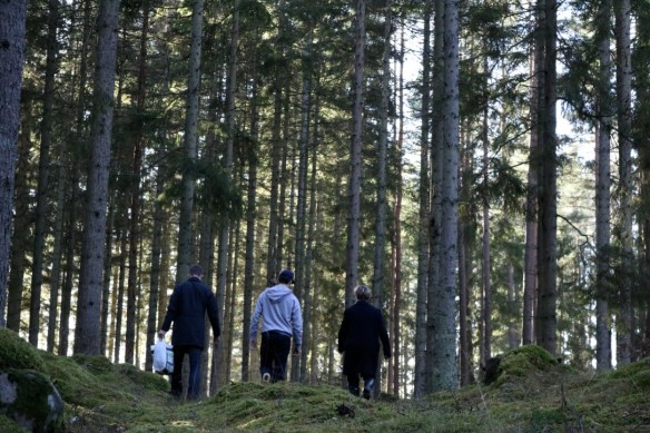 FA15_HomestayExperience_SwedishForest_HyltaSweden_13_KatGowland