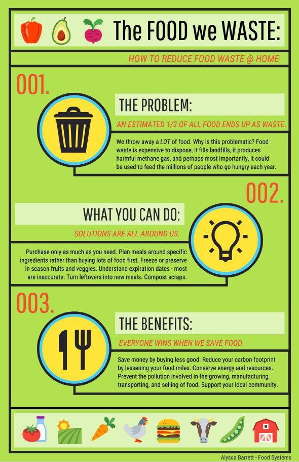 the-food-we-waste
