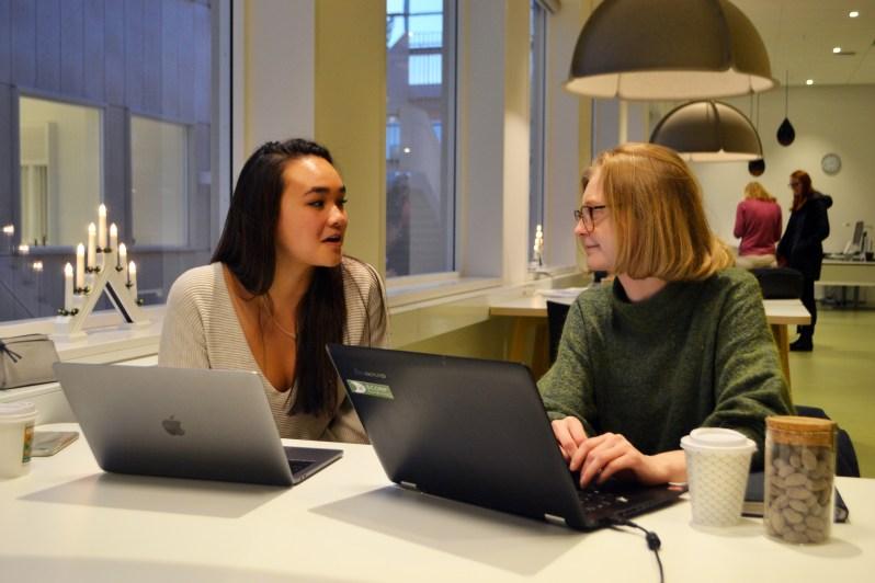 FA17_STO Rebecca Fung Independent Project_Zoe Chodak (5).JPG
