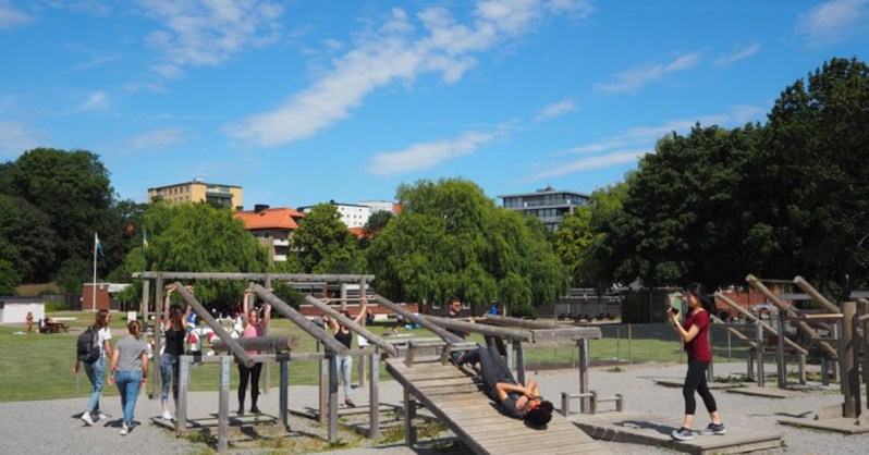 Where to Enjoy the Summer in Stockholm: Our Top 10 Recommendations Outdoor Gyms