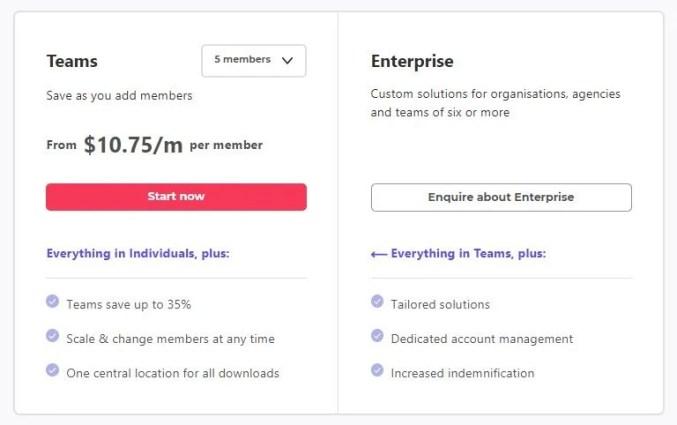 Envato Elements Review -Teams & Enterprise plan