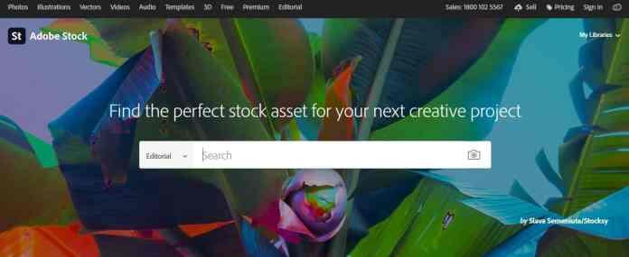Adobe Stock as Storyblocks alternative