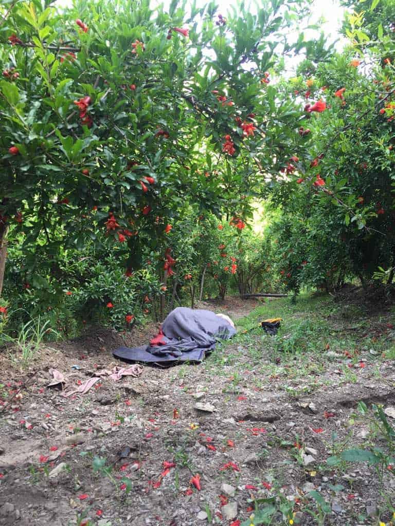 Finally sleeping in the garden ;)
