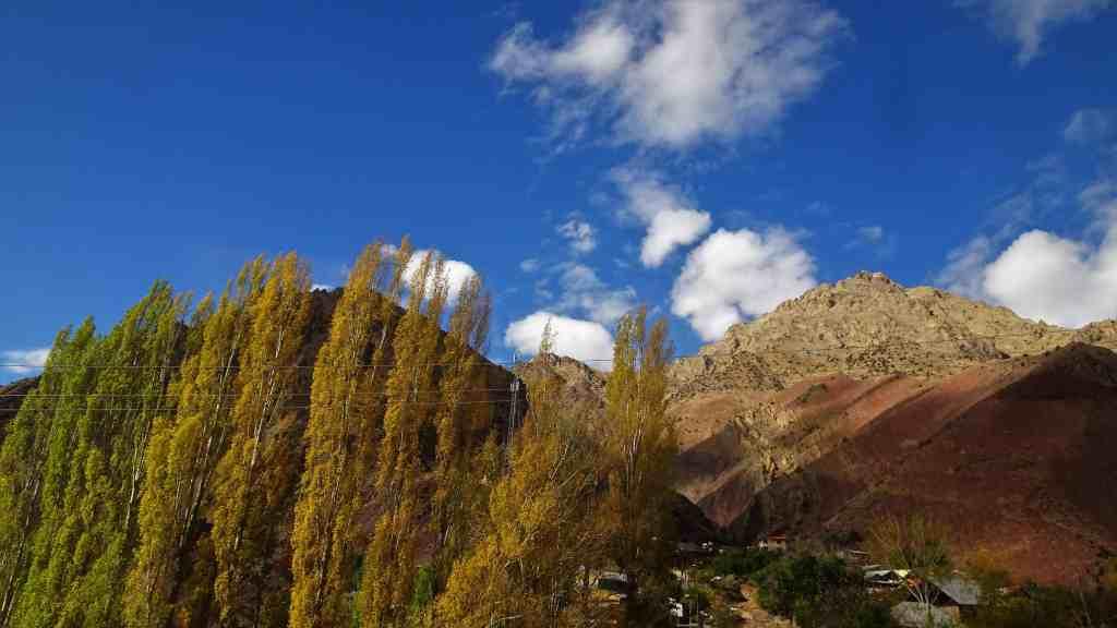 Autum folliage trees and purple mountain Iran