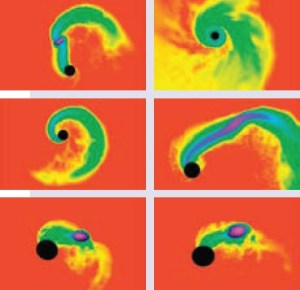 Neutron star - Black hole collision