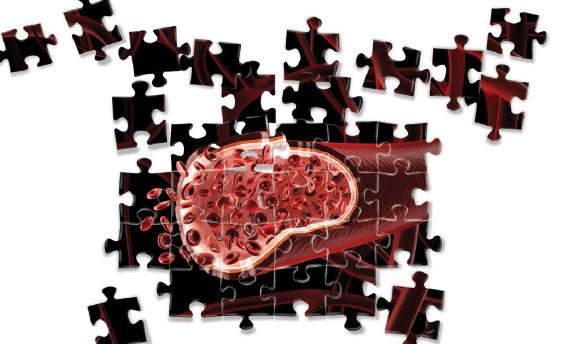 Bioengineering blood vessel image