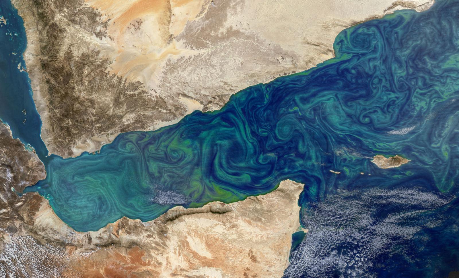 Swirls of algae in the western Indian Ocean