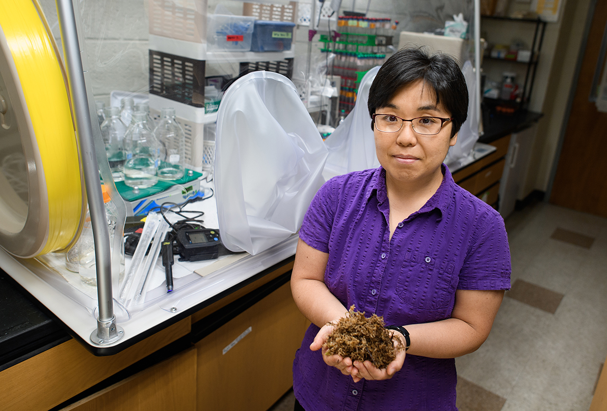 Zhang holding algae