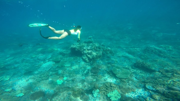 Snorkeling in Nusa Penida