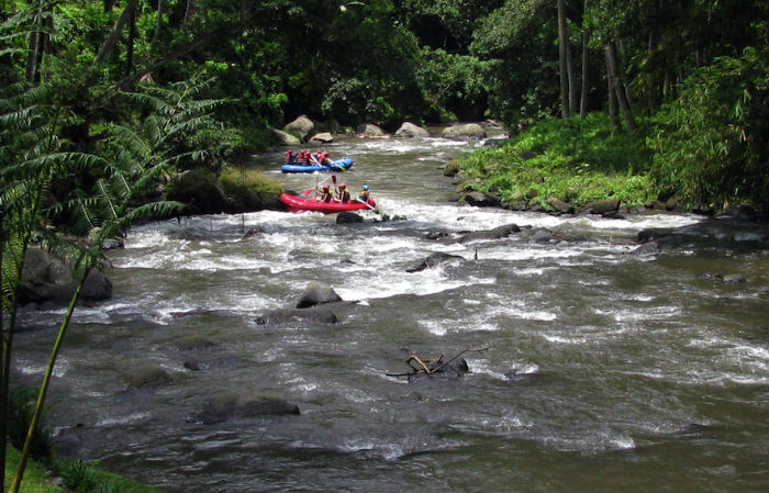 white water rafting ayung river