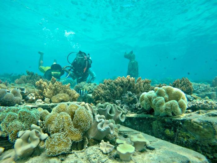 Underwater view of Badul island