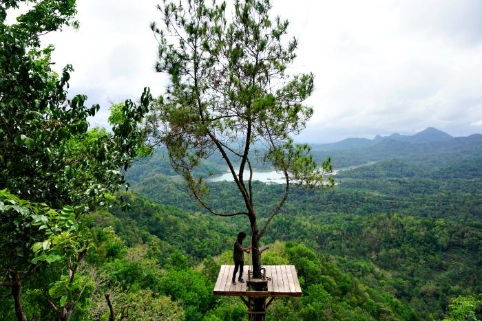 Kalibiru National Park Kulon Progo