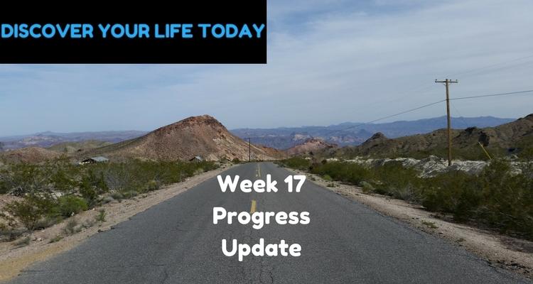 week 17 progress update