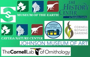 Organization Logo Collage