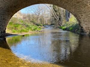 Maeystown Bridge Illinois