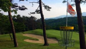 japan open disc golf history