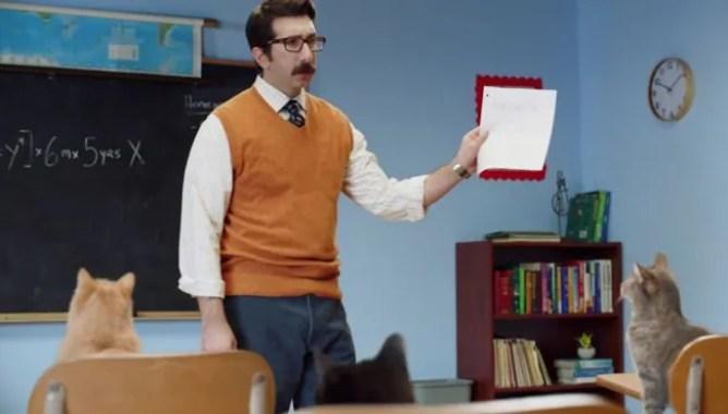 David Lengel playing a teacher in a sketch called Cat Math.