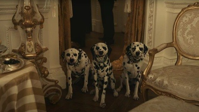 3 evil looking dalmatians looking ready to attack as seen in the new Disney live-action film