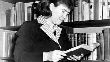 Margaret Mead's Sources of Insight