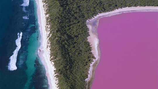How Australia's Lake Hillier gets its pink color