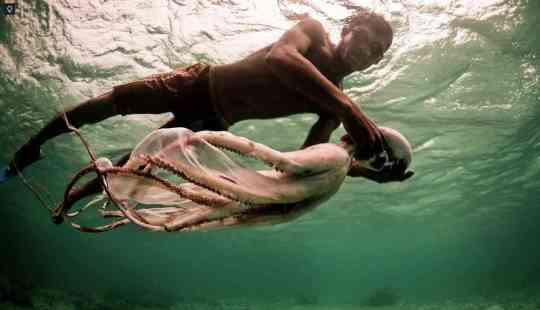Born to dive: The Bajau sea nomads spend 60% of their day underwater