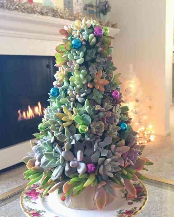 Colors of Succulents Christmas Tree