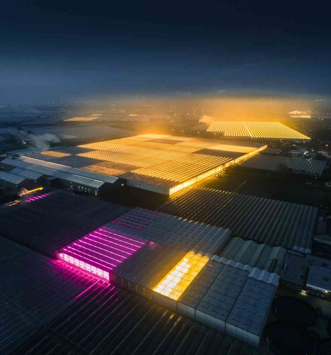 """Netherlands use agricultural density through """"architecture"""" to feed the world"""