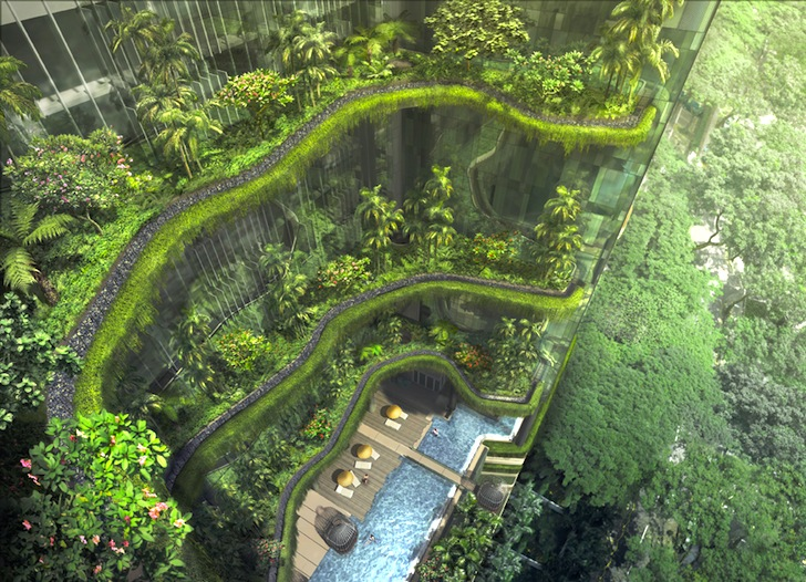 Diseño Interior Biofilico