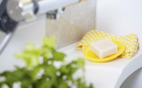 salud ecología hogar