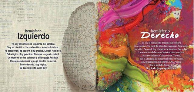 hemisferios-cerebrales-mitos-verdades-l-73ro8f