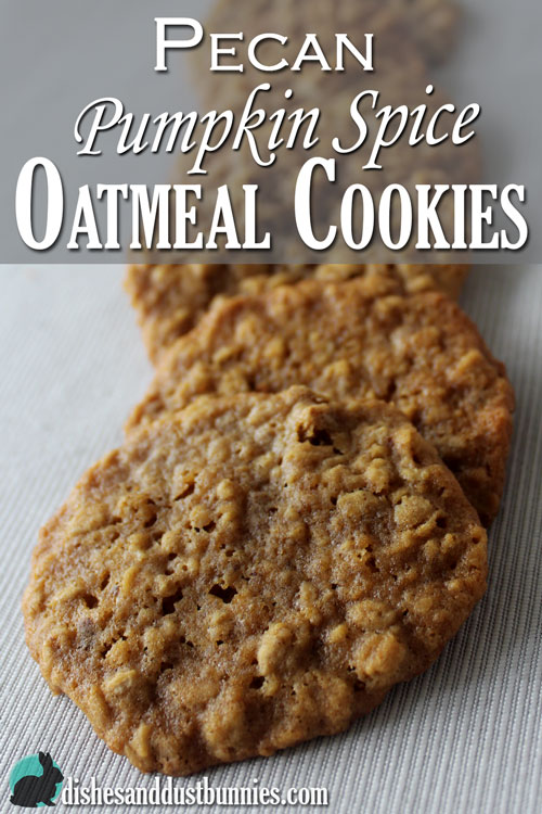 Oatmeal pumpkin spice cookies recipe