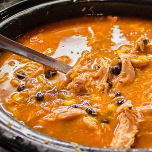 Slow Cooker Chicken Tortilla Soup from dishesanddustbunnies.com