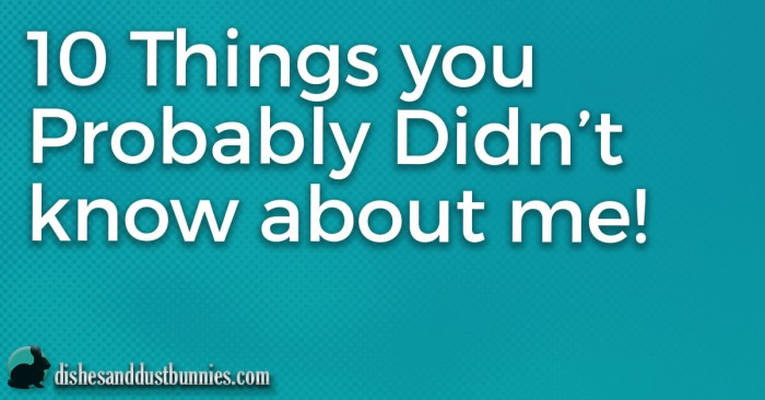 10 Things you probably Didn't know about me! from dishesanddustbunnies.com