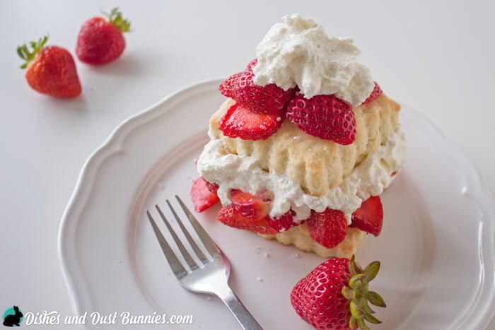 Strawberry Shortcake form dishesanddustbunnies.com