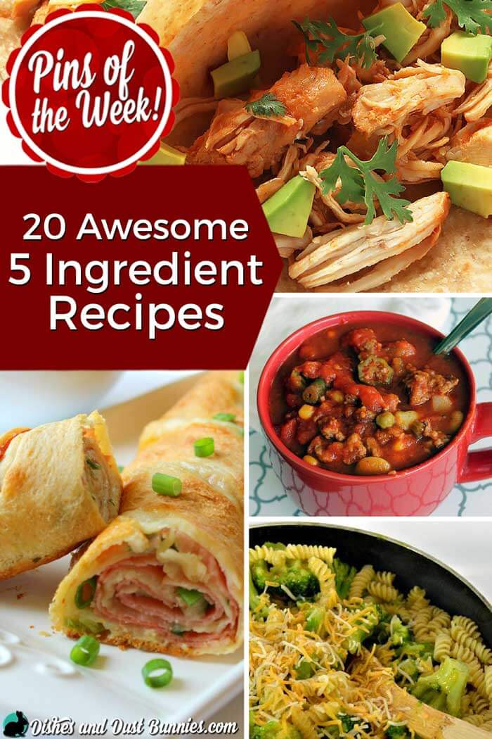 20 Awesome 5 Ingredient Recipes - Pins of the Week! from dishesanddustbunnies.com
