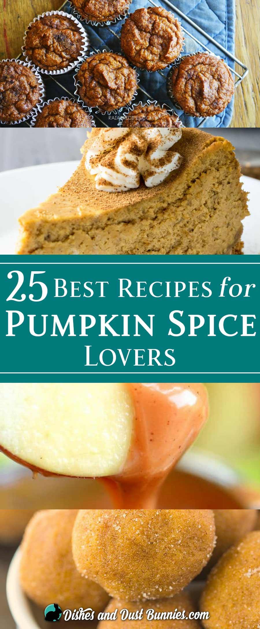 25 Best Recipes for Pumpkin Spice Lovers - dishesanddustbunnies.com