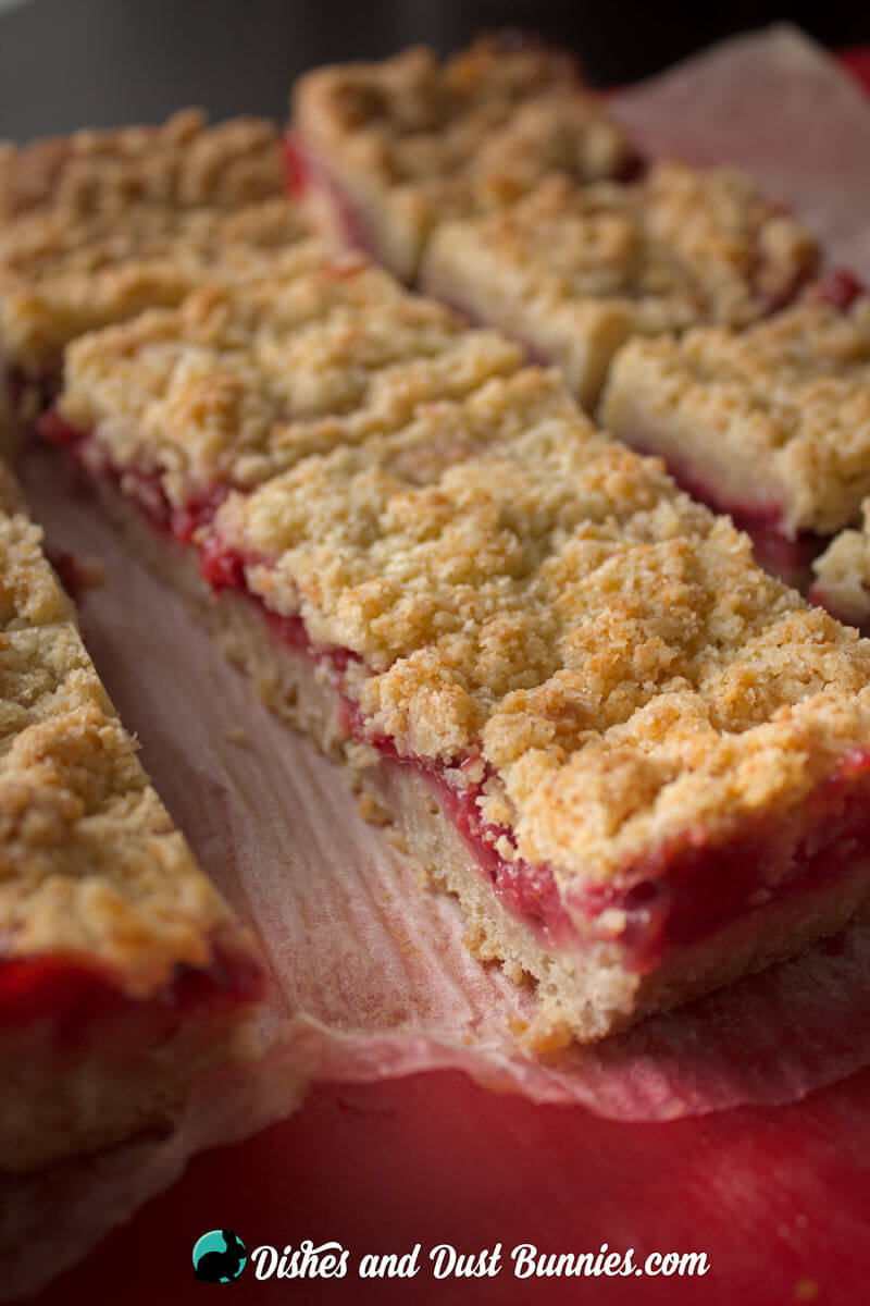 Strawberry Crumb Bars from dishesanddustbunnies.com